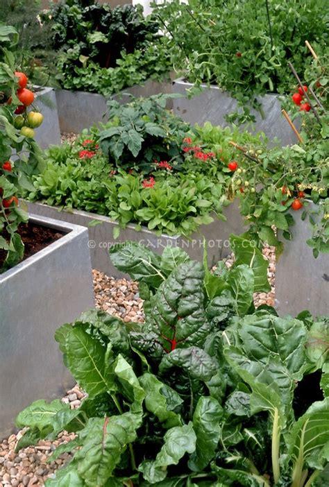 Concrete Container Gardening  El Jardin Pinterest