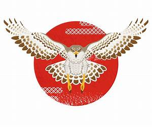 Flying Hawk ,Front View, Isolated Stock Vector ...