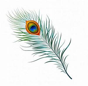 free download peacock feather clip art - Free Vectors on ...