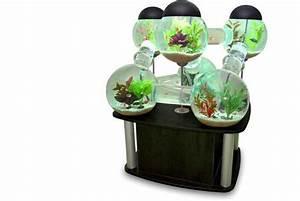 Fish and Aquarium blog: 9 Cool Home Aquariums