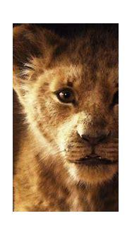 The Lion King 2019   4K wallpaper 3840x2160 for desktop ...