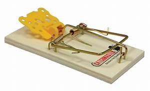 602pe Mouse Snap Trap - 72  Pk - Clearance