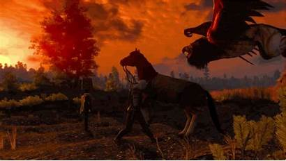 Witcher Wild Hunt Hours Why Answer