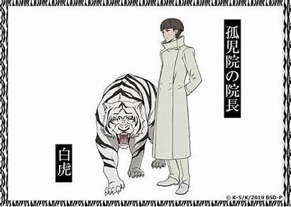 Stray Dogs Headmaster Bungou Chuuya Anime Dazai