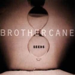 brother cane brother cane album spirit  rock webzine fr