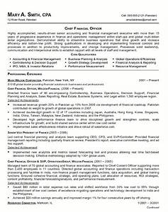 resume sample 21 cfo finance executive resume career With finance executive resume