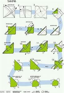 Tortuga    Origami  Papiroflexia  Papel  Animal  Mar