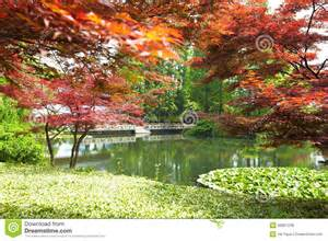 Nature Scenery Spring