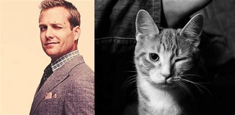 34 Photos Of Sexy Male Celebrities Vs Cats Striking