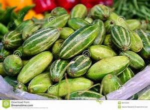 Indian Vegetable-pointed Gourd, Parwal Stock Photo - Image ...
