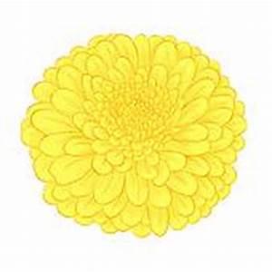 Chrysanthemum Clip Art - Royalty Free - GoGraph