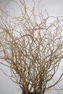 willow tree cake toppers curly willow branches 5 ft