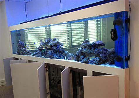 aquarium bureau les d 39 abri sous roche