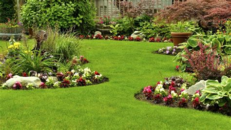 Ideas Para Arreglar Un Jardín Y Resolver Los Problemas