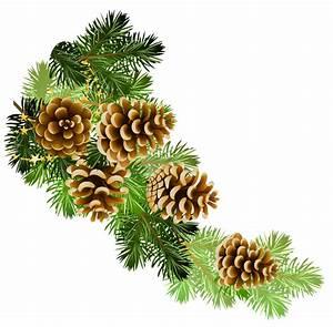 Pine and pine cones branch border clip art   Clip Art ...