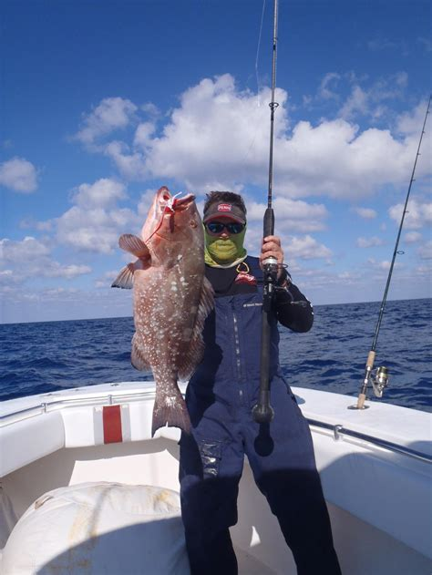 fishing grouper bottom lb mark florida combo