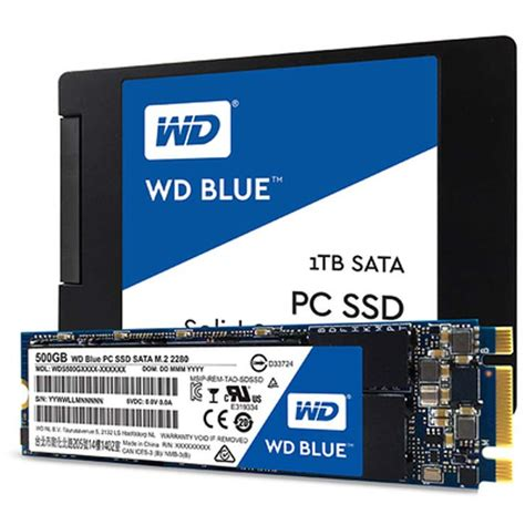 Best Laptop Ssd by The Best Ssds For Upgrading Your Laptop Pcmag