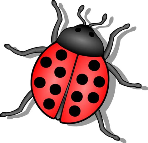 Bug Clipart Bug Clip At Clker Vector Clip