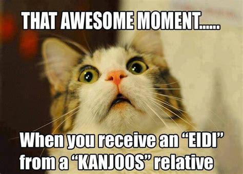 Funny Memes In Urdu - eid jokes memes sms funny quotes in urdu fashion fanz