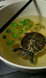 Artist creates stunning 3D paintings of fish using layers ...