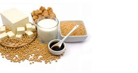 gli alimenti contengono proteine proteine vegetali lista degli alimenti le contengono