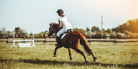 riding horseback camps jersey summer