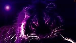 Purple Tiger Wallpaper - Best Free Wallpapers