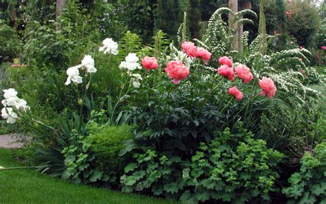 flower gardens images gallery
