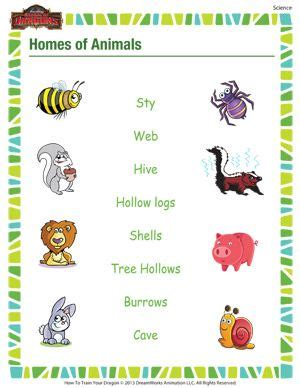 1st grade science worksheets free printables google