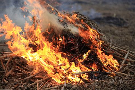 Burning Yard Waste And Your Asthma