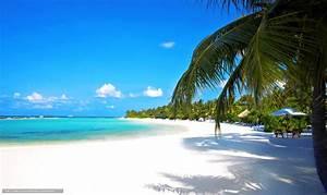 Fond Ecran Mer : tlcharger fond d 39 ecran tropiques mer plage fonds d 39 ecran ~ Farleysfitness.com Idées de Décoration