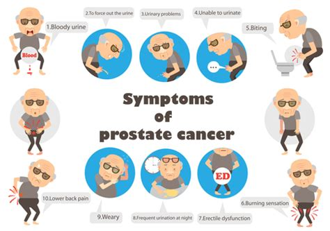 Prostate Cancer  Information You Should Know. Malayalam Signs Of Stroke. Kidney Disease Signs. Telephone Call Signs Of Stroke. Irish Signs. Traffic Bahrain Signs Of Stroke. Panic Attack Signs. Happy Smiley Signs. Eyelid Dermatitis Signs Of Stroke