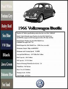 1966 Beetle Wiring Diagram 1966 Vw Wiring Diagram Wiring