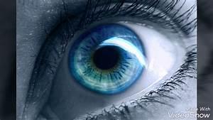 Les Yeux Les Plus Rare : les plus beau yeux du monde youtube ~ Nature-et-papiers.com Idées de Décoration