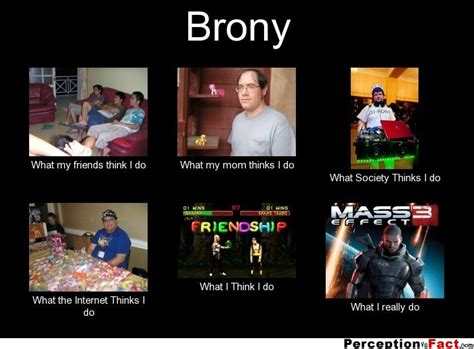 Brony Meme - brony what people think i do what i really do perception vs fact