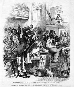 Confessions of a Carpetbagger: The White Man's Revolution ...
