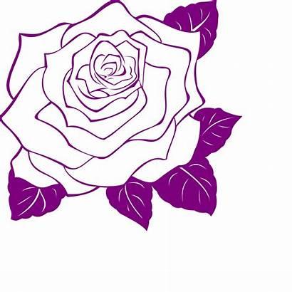 Rose Outline Clip Purple Drawing Clipart Line