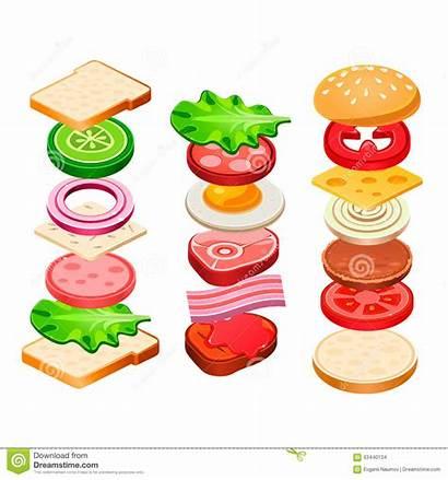 Sandwich Ingredients Hamburger Vector Illustration