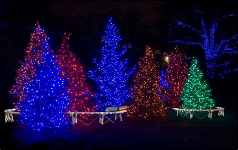christmas lights for outside trees 301 moved permanently
