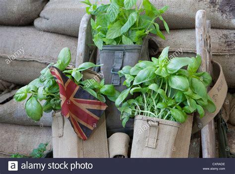 Garten Im Herbst Graben by Dig For Victory Stockfotos Dig For Victory Bilder Alamy