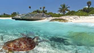Best Beach Cities in Mexico