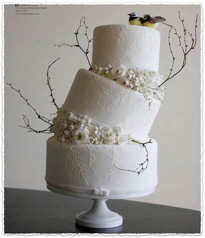 Cake Cakes Buttercream Shower Itunes