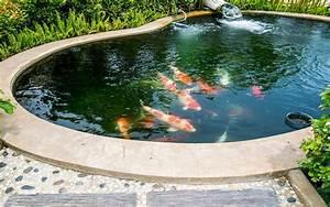 les bassins de jardin en beton dossier With plan de bassin de jardin 5 centre commercial