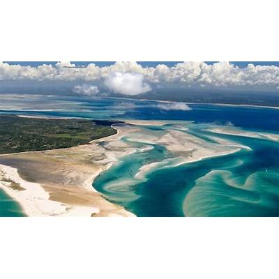 African Parks to Manage Mozambique Sanctuary