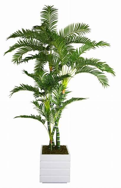 Palm Tree Tall Planter Ashley Artificial Laura