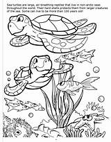 Coloring Underwater Adventure Really Quantity sketch template