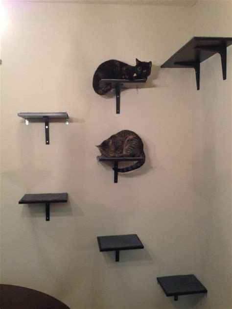 ikea hack cat shelves cats pinterest