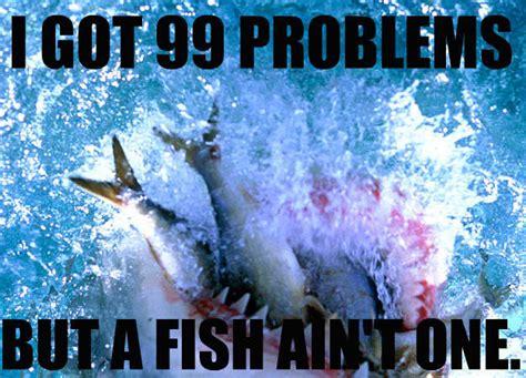 funniest shark memes complex