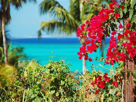 bahamas holidays   holidays  bahamas