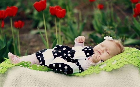 Baby Wallpapers Roses Hd Desktop Wallpapers 4k Hd